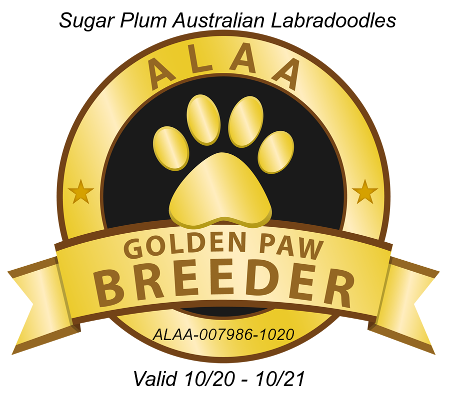 Golden Paw Breeder